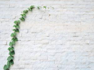 外壁が剥がれてしまう原因とおすすめの補修方法